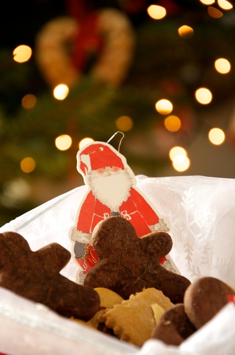 Lebkuchen i biscotti di Natale